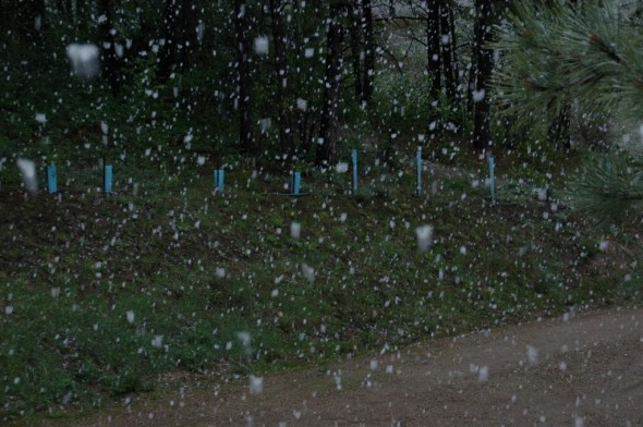 Snow In Late May!